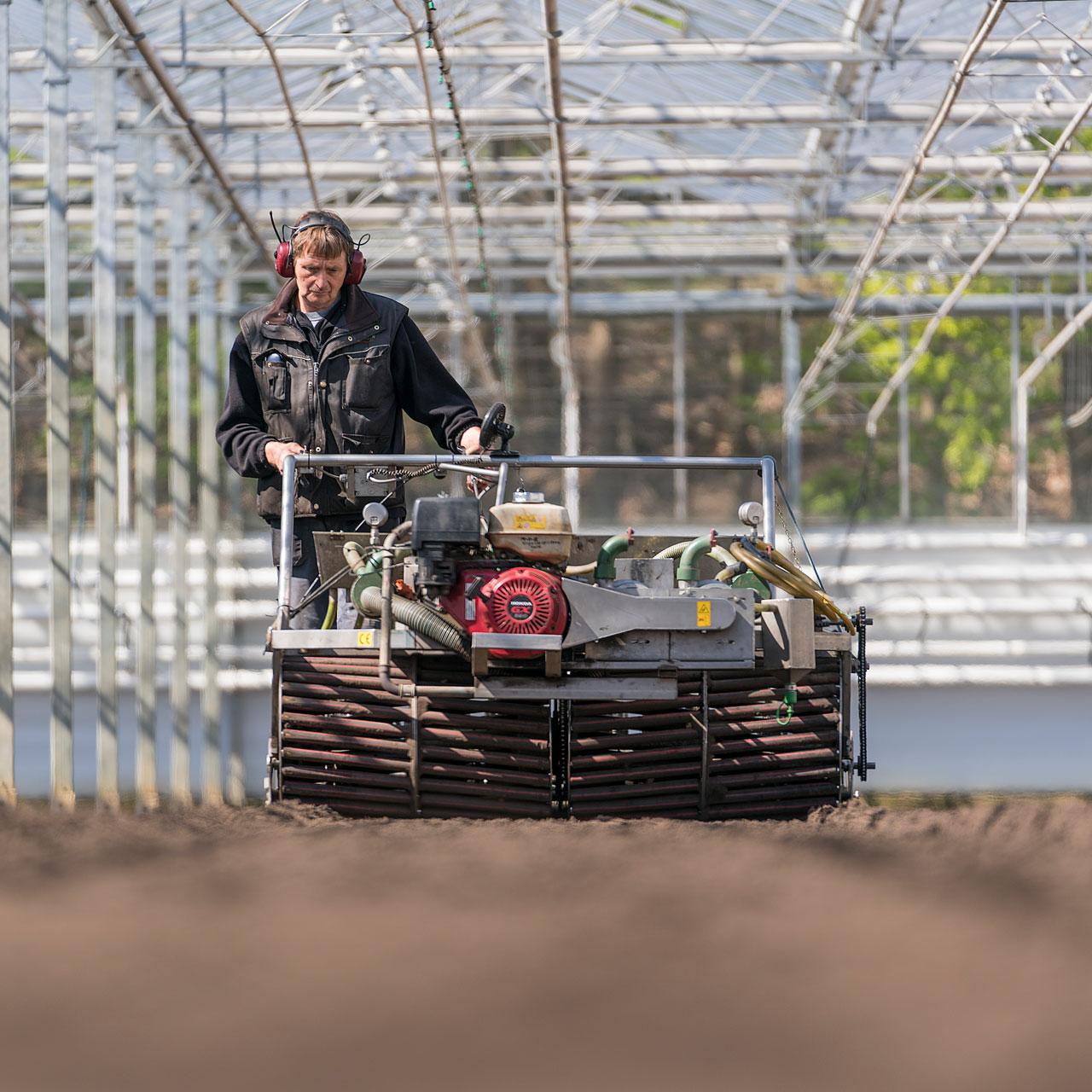 Melderslo sowing