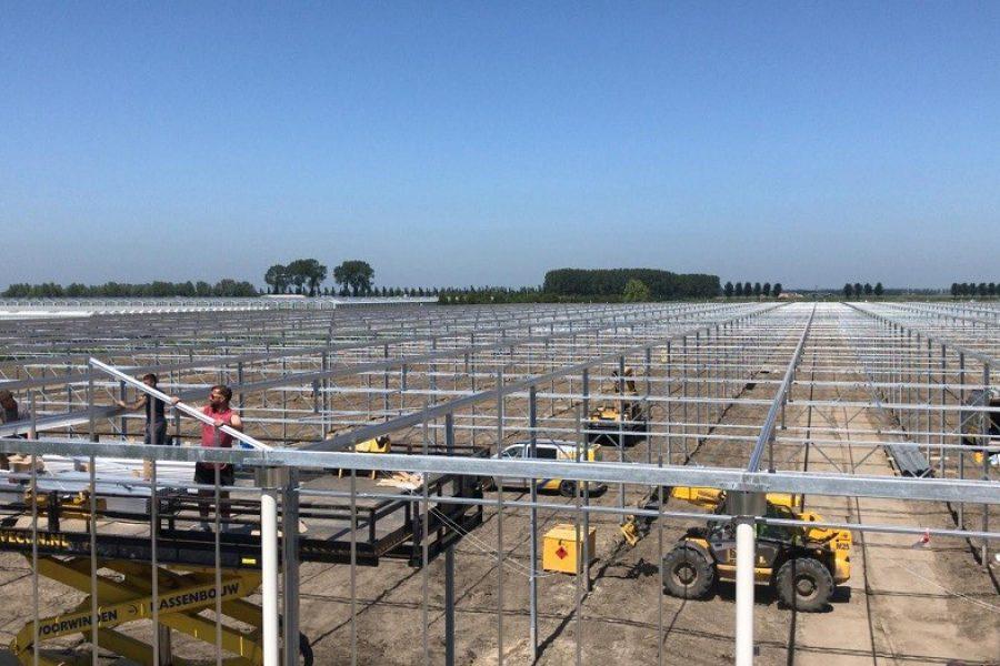 Serre di nuova costruzione Ortolanda Oude-Tonge